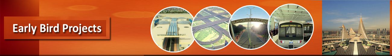 Early Bird Projects-Dholera SIR